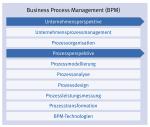 BPM CBOK-Struktur